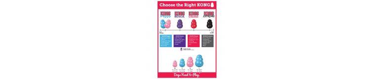 Kong - jaki wybrać?