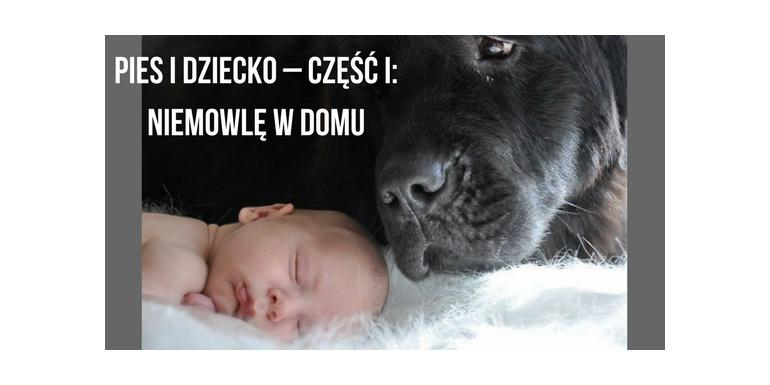 PIES I DZIECKO – część I: niemowlę w domu