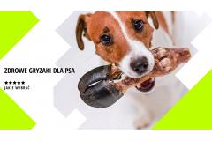 Zdrowe gryzaki dla psa