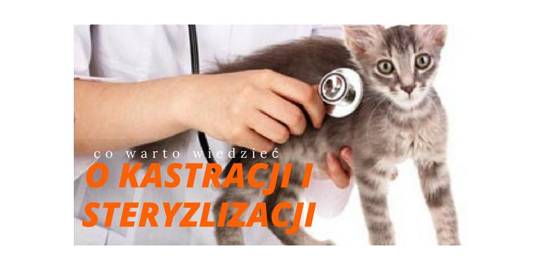 O kastracji i sterylizacji