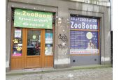 ZooBoom